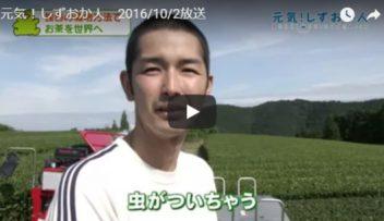 "SBS静岡放送""元気!しずおか人""にて向島園が紹介されました。の写真"